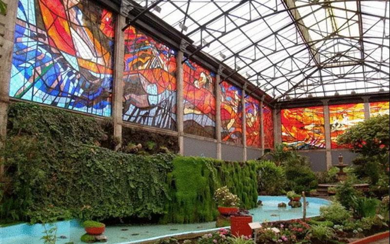 Ботанический сад Космовитраль