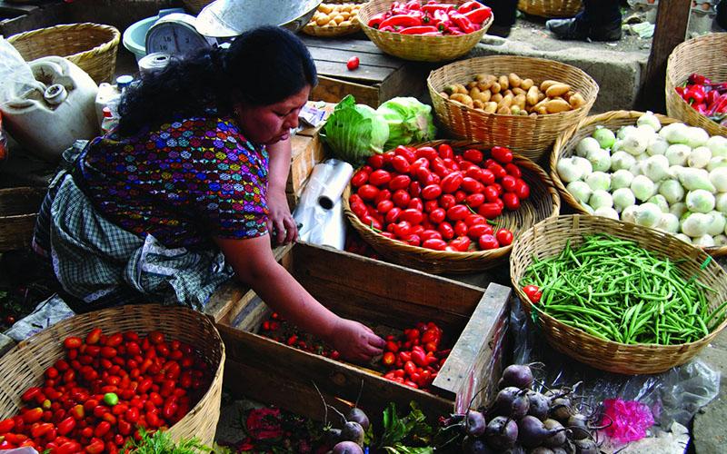 Кулинарный тур в Мексике