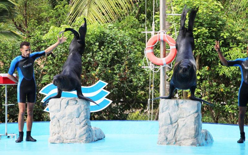 Манати парк развлечений в Доминикане
