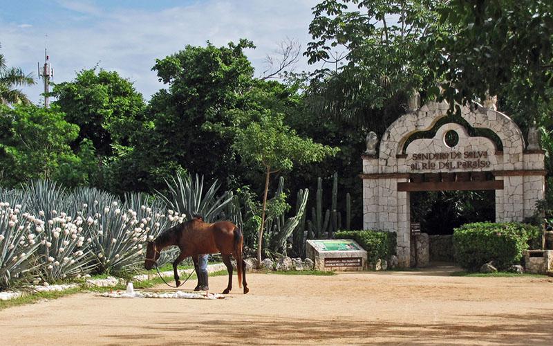 Парк Шкарет в Мексике
