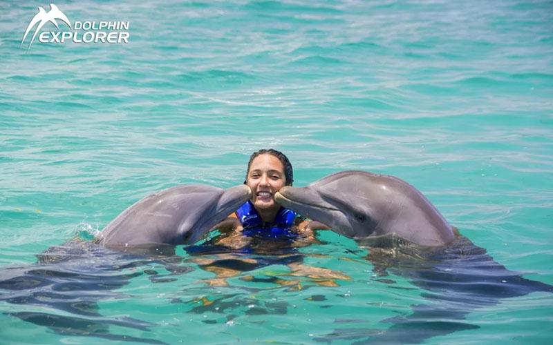 Парк дельфинов Доминикане